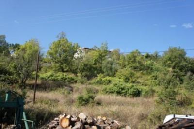 Spanohori-Townplan0.jpg