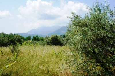 Spanohori-Ria3.jpg
