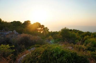 Ts-Sunset1.jpg